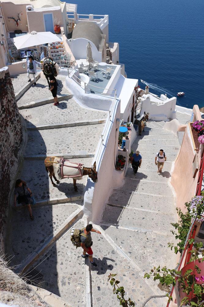 Santorini Treppe Esel