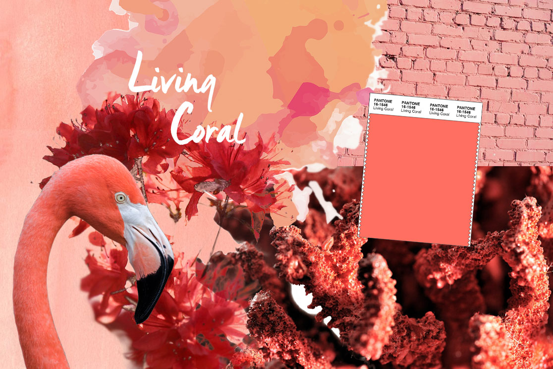 Pantone Farbe des Jahres 2019 Living Coral Collage