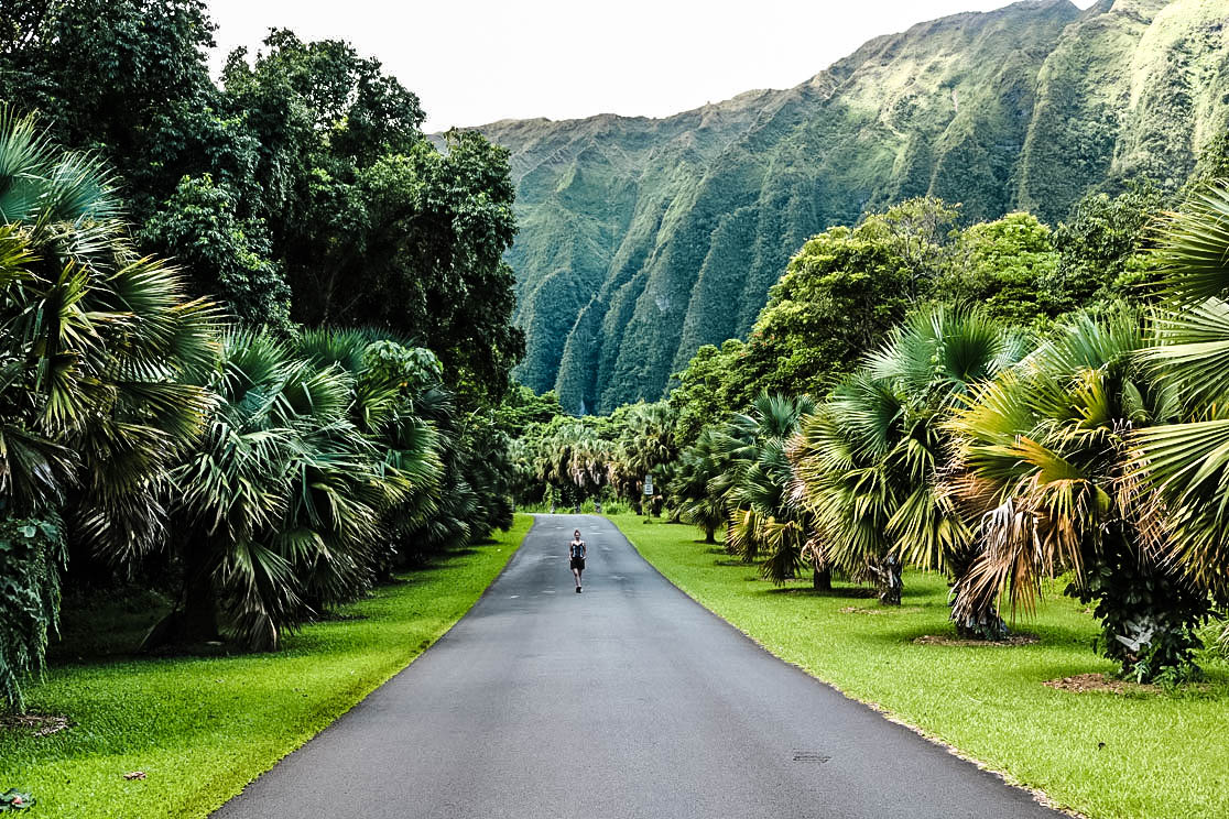 Ho'olumahia Botanical Garden Oahu